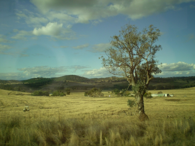 Dubbo Plains, NSW, Australia